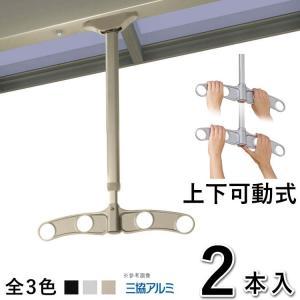 竿掛け 吊り下げ式竿掛け 物干し金物 SATK-02-2 吊下げ 上下可動 2本入 三協アルミ テラス用