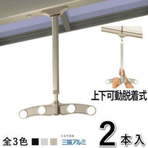 竿掛け 吊り下げ式竿掛け 物干し金物 SATKD-02-2 吊下げ 上下可動 脱着 2本入 三協アルミ テラス用