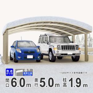 カーポート 積雪 対応 2台用 国内一流メーカー品 積雪50cm対応 60-50 標準柱 シンプルカーポート kantoh-house