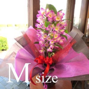 デンドロビューム Mサイズ 花 フラワー 鉢花 鉢植え 花鉢 プレゼント ギフト 贈り物 お誕生日 開店祝い 引越し祝い お歳暮 御歳暮 蘭 洋ラン デンドロビウム
