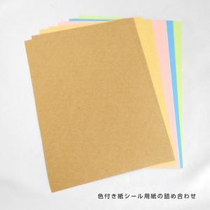シール用紙A5サンプルセット 色付紙素材5種各2枚/1セット kapita