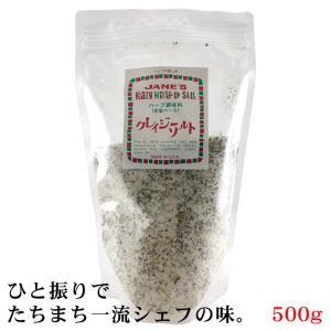 塩 クレイジーソルト ジェーン 500g kappa-chianti