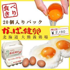 「かっぱの健卵」 20個入り|kappa-egg