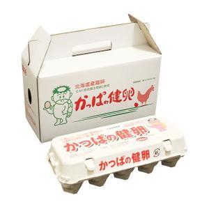 「かっぱの健卵」 20個入り|kappa-egg|02