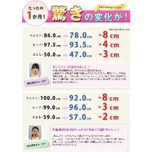 お買い求めやすくなりました! くびれツイスター キュキュッ エアロライフ DR-9900|karada-club|02
