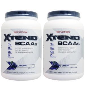 【2個セット】[ 大容量約1.2kg ] エクステンド (BCAA+Lグルタミン+シトルリン) ※グレープ|karada-oh