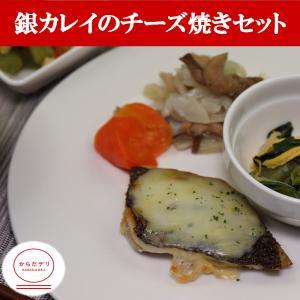 銀カレイのチーズ焼きセット(B-5)冷凍 弁当 宅配 おかず 惣菜 健康 弁当 カロリー 塩分 高血圧 メタボ からだデリ 味の富士山|karadadeli