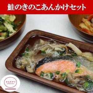 鮭のきのこあんかけセット(B-10)冷凍 弁当 宅配 おかず 惣菜 健康 弁当 カロリー 塩分 高血圧 メタボ からだデリ 味の富士山|karadadeli