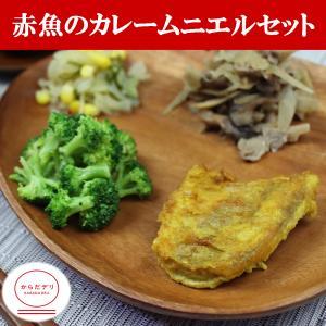 からだデリ 味の富士山 赤魚のカレームニエルセット(B-21)冷凍弁当 健康弁当 宅配 おかず 惣菜弁当 おべんとう karadadeli