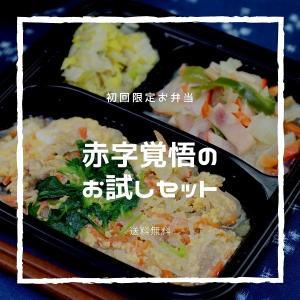 【初回限定 送料無料】からだデリ 味の富士山 お試し3食セット(B-1,13,15)冷凍弁当 健康弁当 宅配 おかず 惣菜弁当 おべんとう|karadadeli