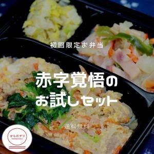 【初回限定 送料無料】からだデリ 味の富士山 自由に選べるお試し3食セット 冷凍弁当 健康弁当 宅配 おかず 惣菜弁当 おべんとう karadadeli