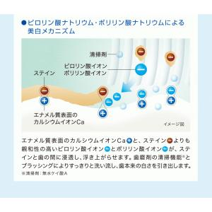 歯磨き粉 ホワイトニング ライオン DENT ...の詳細画像3