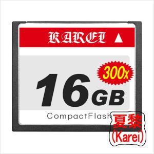 【16GB】 300倍速コンパクトCFカード フラッシュ カンフーパンダーシリーズ【メール便発送】|karei