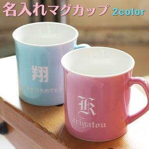 マグカップ 名入れ 送料無料 プレゼント ギフト 美濃焼イニシャルマグカップ プランタン コーヒーカップ karin-e