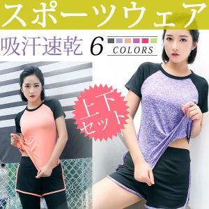 スポーツウェア フィットネス Tシャツ ショートパンツ 吸汗速乾 上下セット レディース |karin