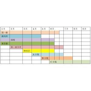 必勝合格パック地方上級・国家一般コース(速習パック)|karisumakousi|03