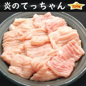 焼肉 BBQ バーベキュー ホルモン タレ漬け てっちゃん 250g