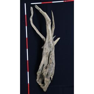 流木(6) 高さ100cm 幅40cm