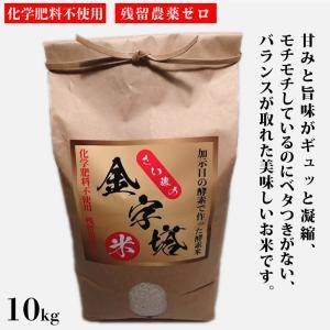 さい藤の酵素米 金字塔米 10kg コシヒカリ|kashimanokouso