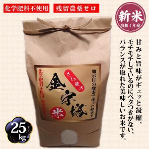 さい藤の酵素米 金字塔米 30kg コシヒカリ|kashimanokouso