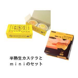 半熟生カステラ×1 生カステラmini×2 セット NEW 【冷凍】 お取り寄せグルメ|kashuen-moricho