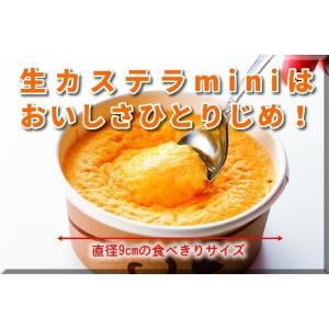 生カステラmini(チーズ) 【冷凍配送】|kashuen-moricho|03
