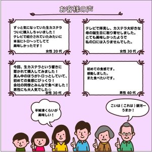 半熟 生カステラ(プレーン) 【冷凍配送】ギフト お取り寄せグルメ|kashuen-moricho|04