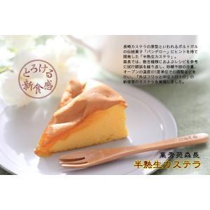 半熟生カステラ(プレーン) 【コラーゲン配合・冷凍配送】|kashuen-moricho|07