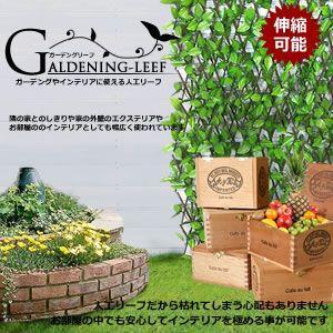 【限定21台】伸縮可能な 人工ガーデンリーフ 外壁やインテリアに 仕切り 緑のカーテン KZ-GALEEF 即納|kasimaw