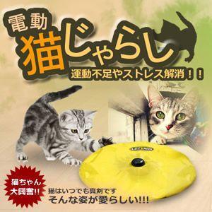 運動不足やストレス解消! 電動猫じゃらし で犬も猫も夢中になります 組み立ては簡単 KZ-CATJ 即納|kasimaw
