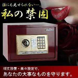 金庫 コンパクト 頑丈 簡単設置 暗証便号 楽々設定 の ポータブル金庫 KZ-SAFE-BOX-RD 即納|kasimaw