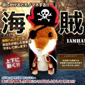 話しかけるとモノマネする 海賊ハムスター アイアムハムが登場 !!! 声の大きさも真似 上下にかわいく動きます KZ-KAIHAM 即納|kasimaw