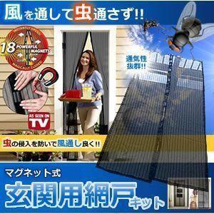 玄関用 網戸 キット マグネット搭載 万能 風を取り込み 虫を入れさせない 換気 部屋 KZ-GENAMI 即納|kasimaw