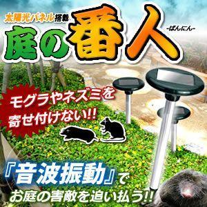 庭の番人 太陽光パネル モグラ ネズミ 害獣 音波 追い払う 庭 畑 家庭菜園 ガーデニング KZ-NIWABAN 即納|kasimaw