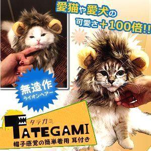 ペット用 タテガミ キャップ コスプレ 猫 小型犬 対応 オシャレ 簡単着脱 ライオン アニマル KZ-TATEGAMI 即納|kasimaw
