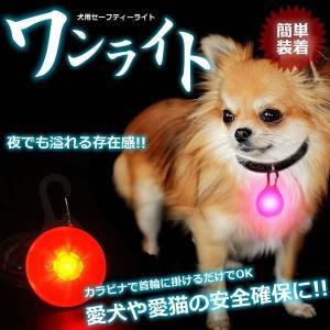 ペット用 LEDライト キーホルダー カラビナ式 セーフティーライト 散歩 電池式 KZ-OINU 即納|kasimaw