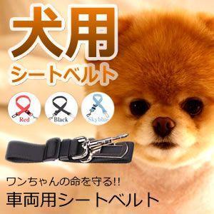 犬用シートベルト 安全を確保 ペット用品  カー用品 シートベルト 犬 リード ドライブ 胴輪 KZ-DOGSEAT 即納|kasimaw