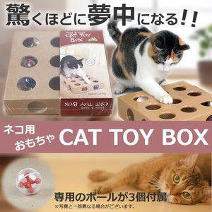 猫用 おもちゃ 猫の好奇心をそそる キャット トイ ボックス ペット用品 おもちゃ 玩具 猫 ボール KZ-CATTOYB 即納|kasimaw