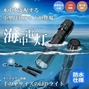 海中電灯 LED 防水 LED懐中電灯最強力防水ミニペンライト ライト小型 ミニ 優れた ライト アウトドア キーホルダー コンパクト KZ-PICCOLO 即納|kasimaw
