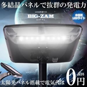 多結晶パネル搭載 高性能 LED ガーデンライト 夜間自動点灯 角度調節 簡単 設置 庭 照明 KZ-YH0601 即納|kasimaw