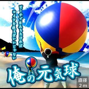 特大 ジャイアント ビーチボール 海 プール ビーチ バレー マリン スポーツ KZ-BALL02 即納 kasimaw
