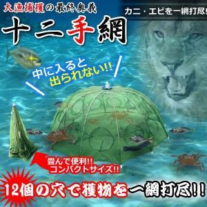 釣り用 最終奥義 十二手網 大漁捕穫 海 蟹 海老 道具 カニ エビ 魚 網 フィッシング KZ-AMI12 即納|kasimaw