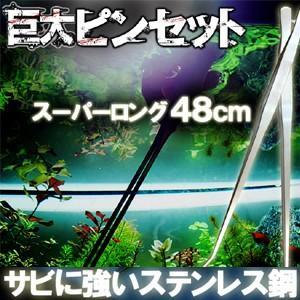 巨大 ピンセット 48cm ステンレス はさみ 水槽 トリミング KZ-BIG-PINCET 即納|kasimaw
