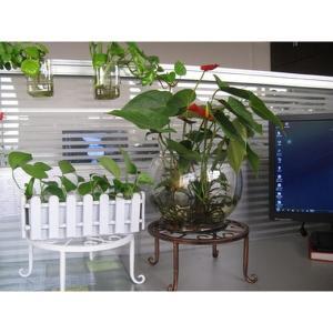 ローテーブル アイアン プランター 鉢植え ラック ガーデニング 花 植物 KZ-NIWA03 予約 kasimaw
