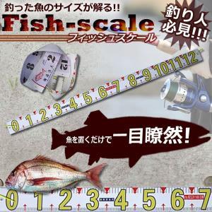 フィッシュスケール メジャー 釣り 計り サイズ メジャー 物差し 魚 尺 寸法 釣果 フィッシング KZ-TURISASI 即納|kasimaw
