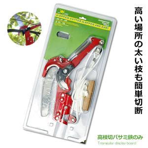高枝切バサミ 鋏のみ 超軽量 剪定 果実 採取 高枝切鋏 ガーデニング 庭 枝切り KZ-POTEDA 即納|kasimaw