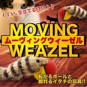 ムービングウィーゼル 動くイタチ ペット用品 モーター駆動 おもちゃ 玩具 猫 犬 KZ-MOVITACHI 即納|kasimaw