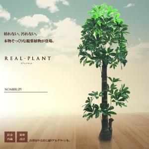 観葉植物 造花 リアルプラント10 大型 人工 部屋 リアル 会社 緑 おしゃれ インテリア フェイクグリーン KZ-QX-E10-170 即納|kasimaw