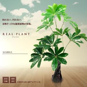 観葉植物 造花 リアルプラント11 大型 人工 部屋 リアル 会社 緑 おしゃれ インテリア フェイクグリーン KZ-QX-E11-60  即納|kasimaw