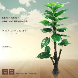 観葉植物 造花 リアルプラント12 大型 人工 部屋 リアル 会社 緑 おしゃれ インテリア フェイクグリーン KZ-WQ-E12-170  即納|kasimaw